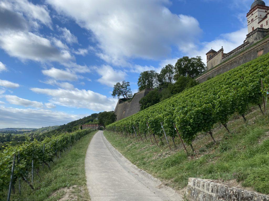 Weinwanderweg hoch zur Festung