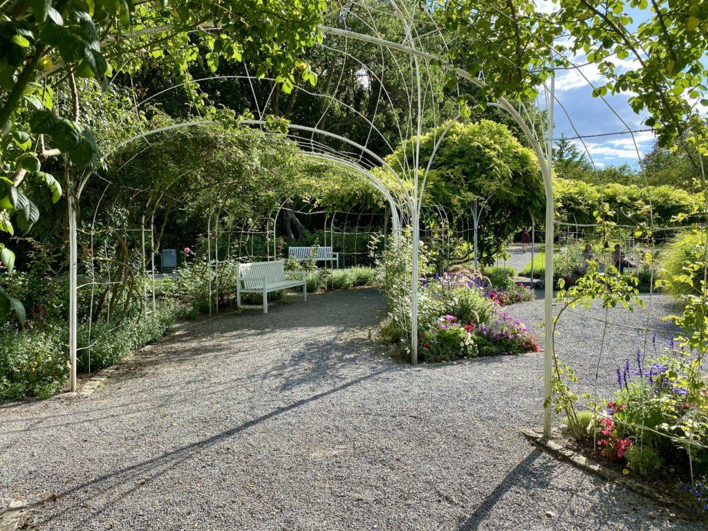Rosenbögen im Landesgartenschaupark in der Zellerau