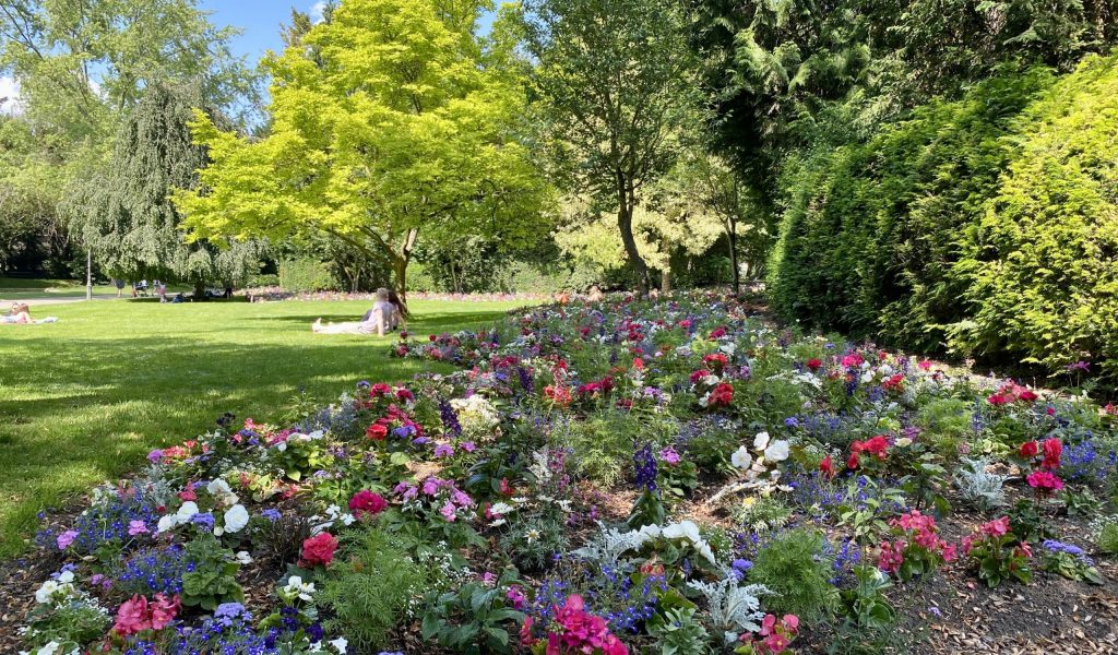 Blumenvielfalt in Klein-Nizza